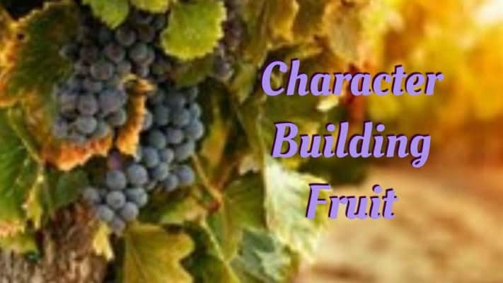 character building fruit